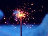 12星座春节最期待的事情是什么?