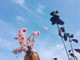 【2018年4月8日——4月14日】星座情感运势