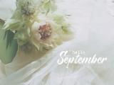 测测9月你会遭遇什么囧事?