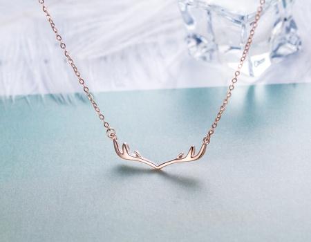 十二星座代表的项链